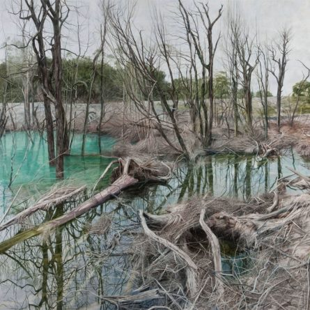 Savage Ponds