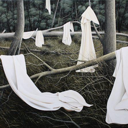 Bush Blankets