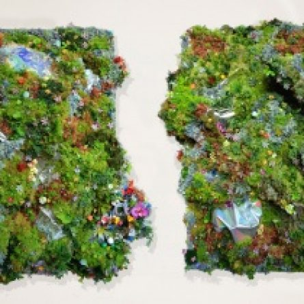 New topographies of nature (diptych)
